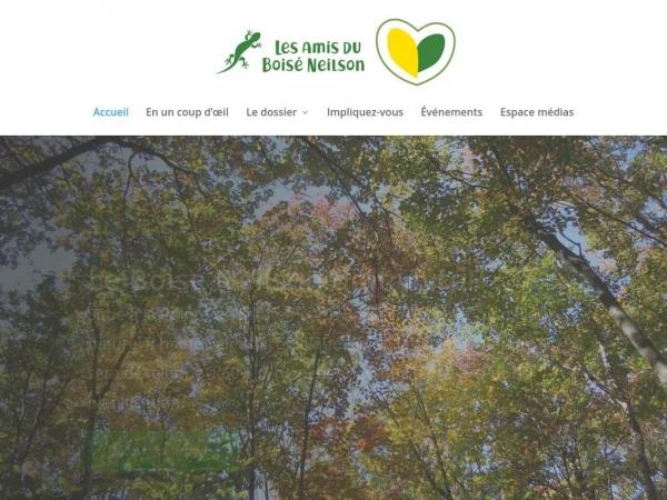 boiseneilson.org